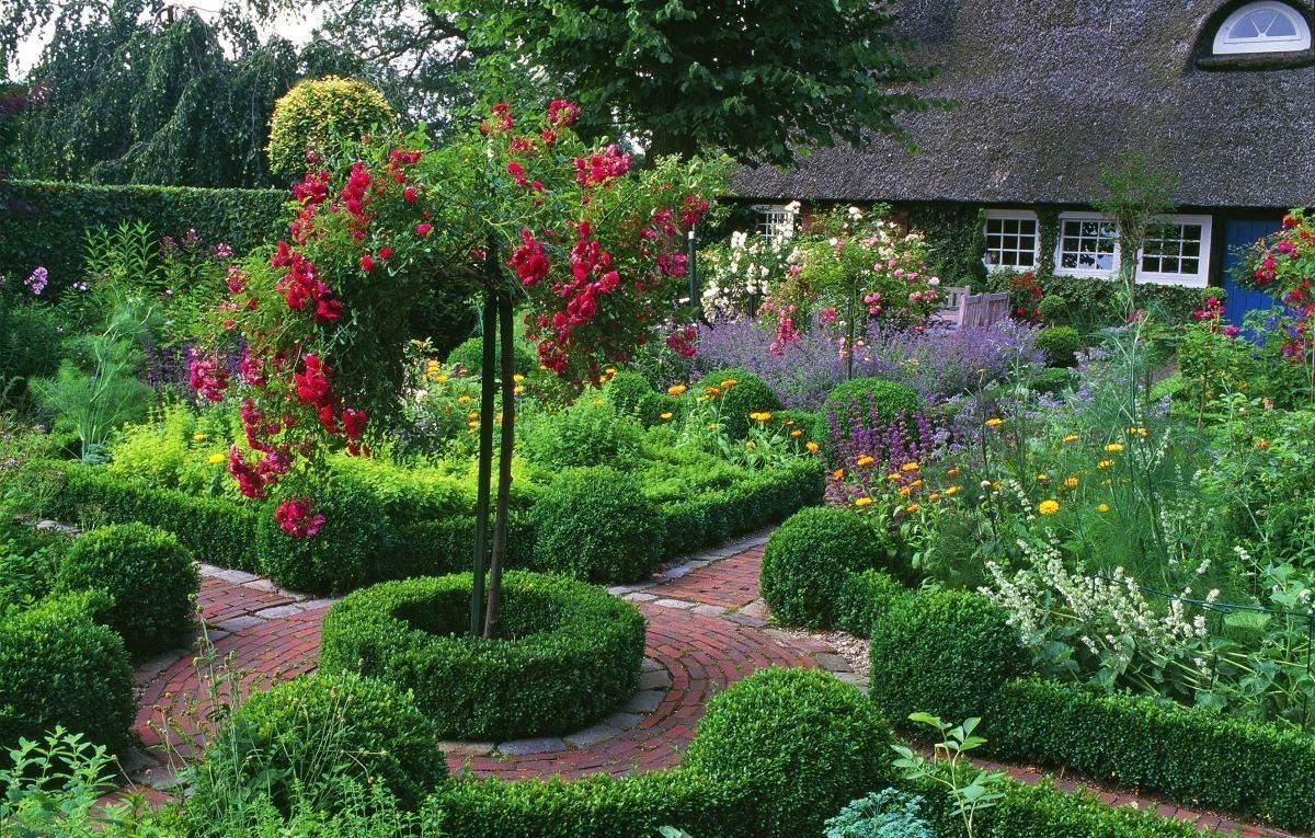 Как посадить сад осенью своими руками