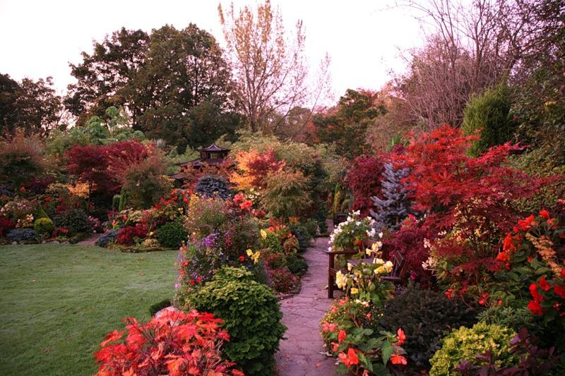 Сад и участок в  цветах:   Белый, Серый, Темно-зеленый, Черный.  Сад и участок в  .