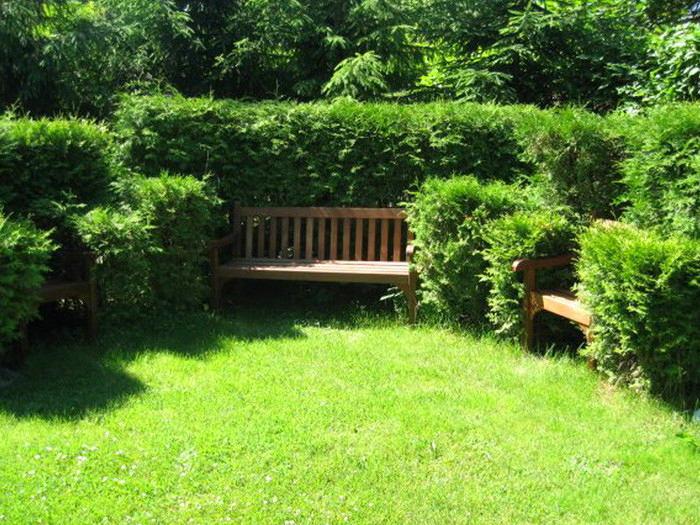 Ландшафт в цветах: темно-зеленый, салатовый. Ландшафт в стилях: экологический стиль.