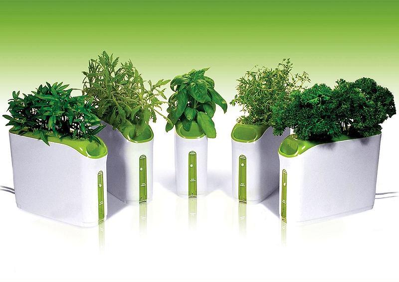 Фото в цветах: светло-серый, белый, темно-зеленый, салатовый. Фото в .