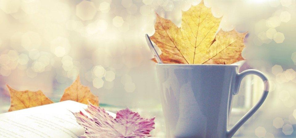 Как встретить осень: 10 важных дел сентября