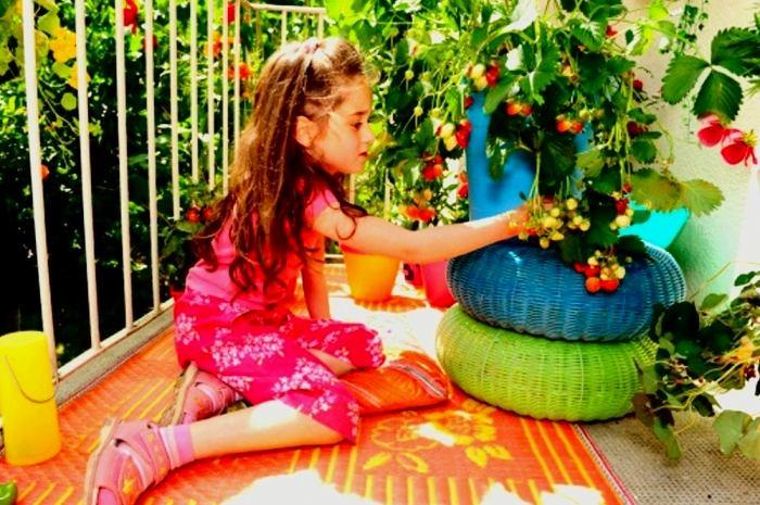 Фото в цветах: оранжевый, черный, темно-зеленый, бежевый. Фото в .