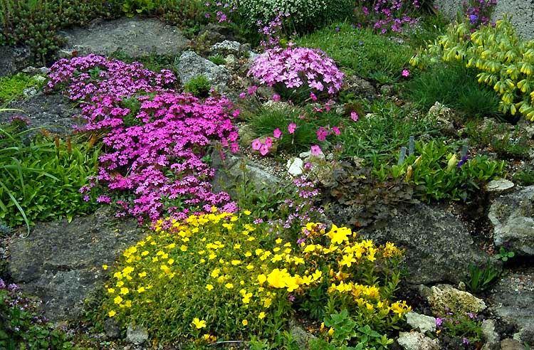 Ландшафт в цветах: красный, желтый, зеленый, серый, светло-серый. Ландшафт в стилях: средиземноморский стиль, экологический стиль.