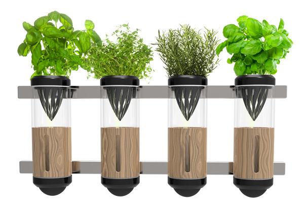 Фото в цветах: серый, темно-зеленый, салатовый, бежевый. Фото в .
