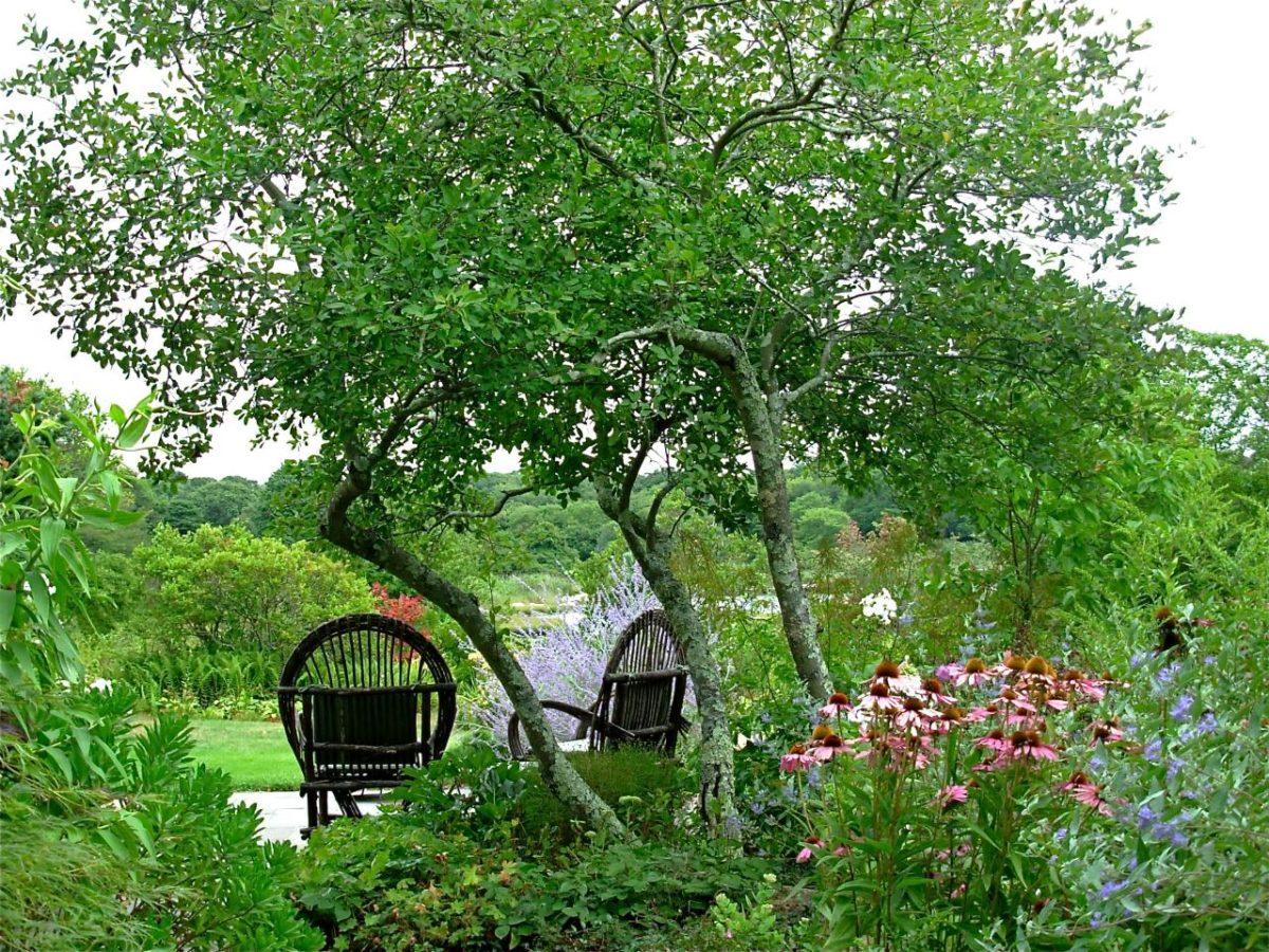 Сад и участок в  цветах:   Белый, Зеленый, Темно-зеленый, Черный.  Сад и участок в  .