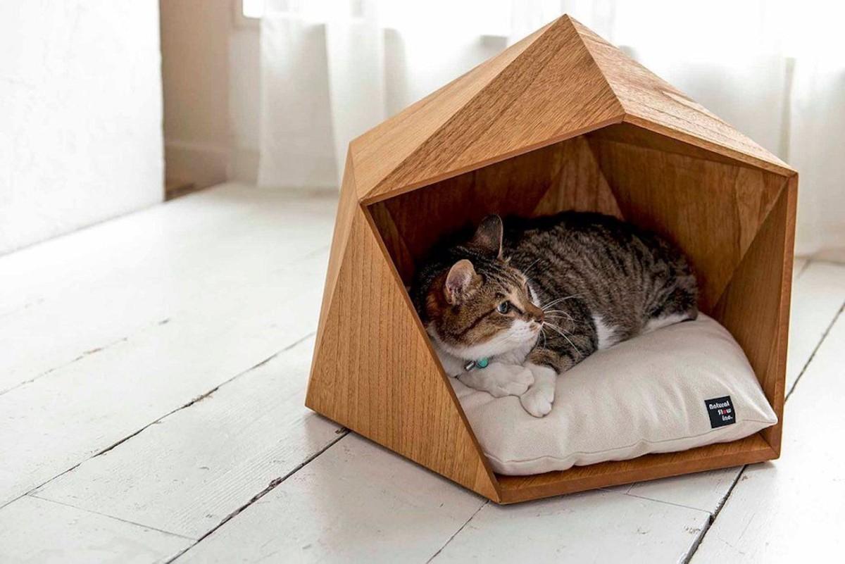 Дом для кошки: пусть у зверя тоже будет своё личное пространство