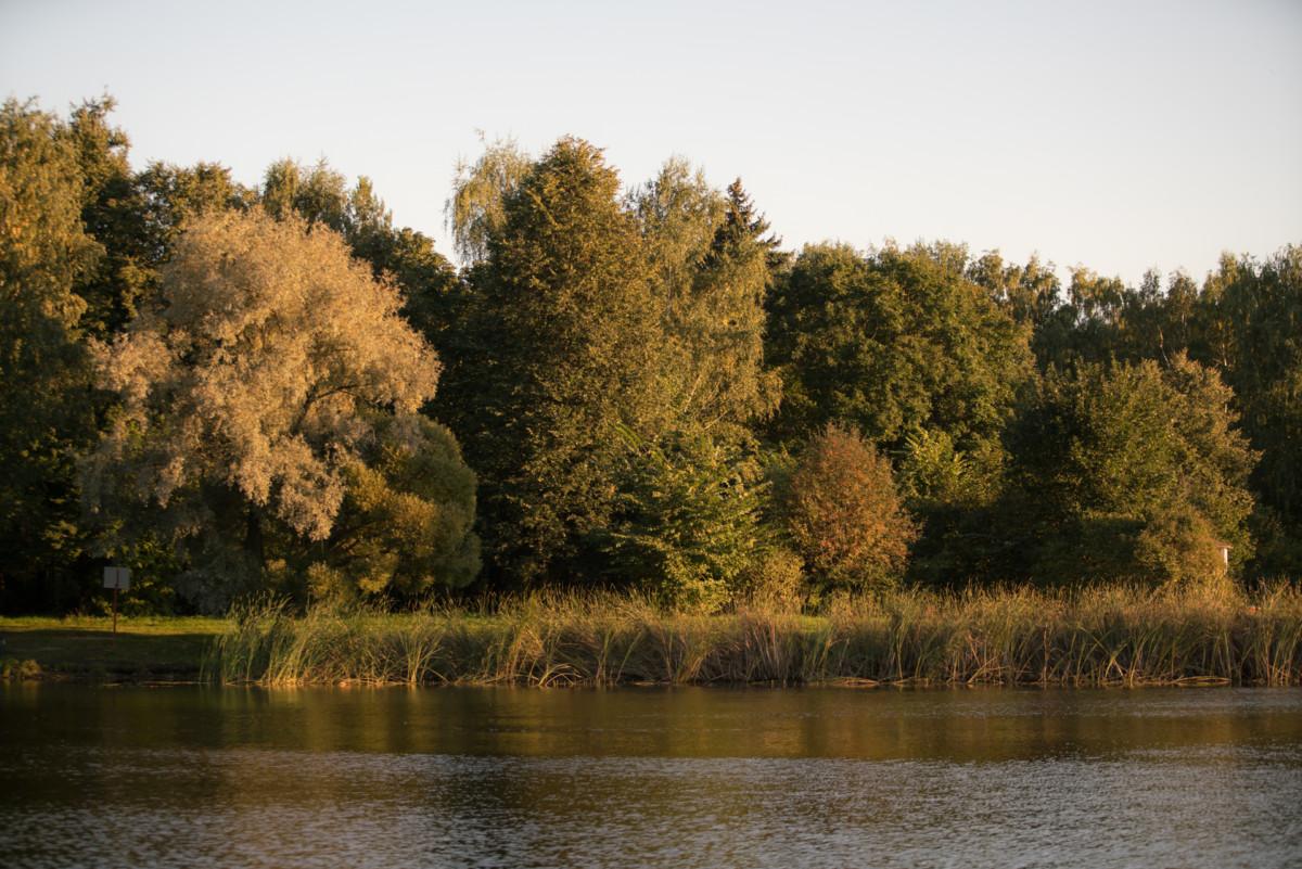Где погулять в Москве осенью: сотрудники Grohe делятся опытом