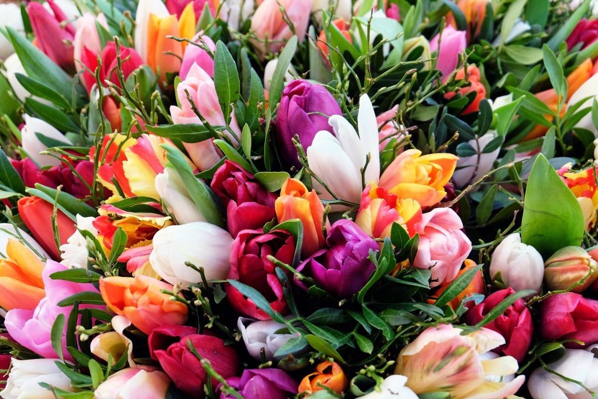 Подарки на 8 Марта: 10 способов исполнить женские мечты
