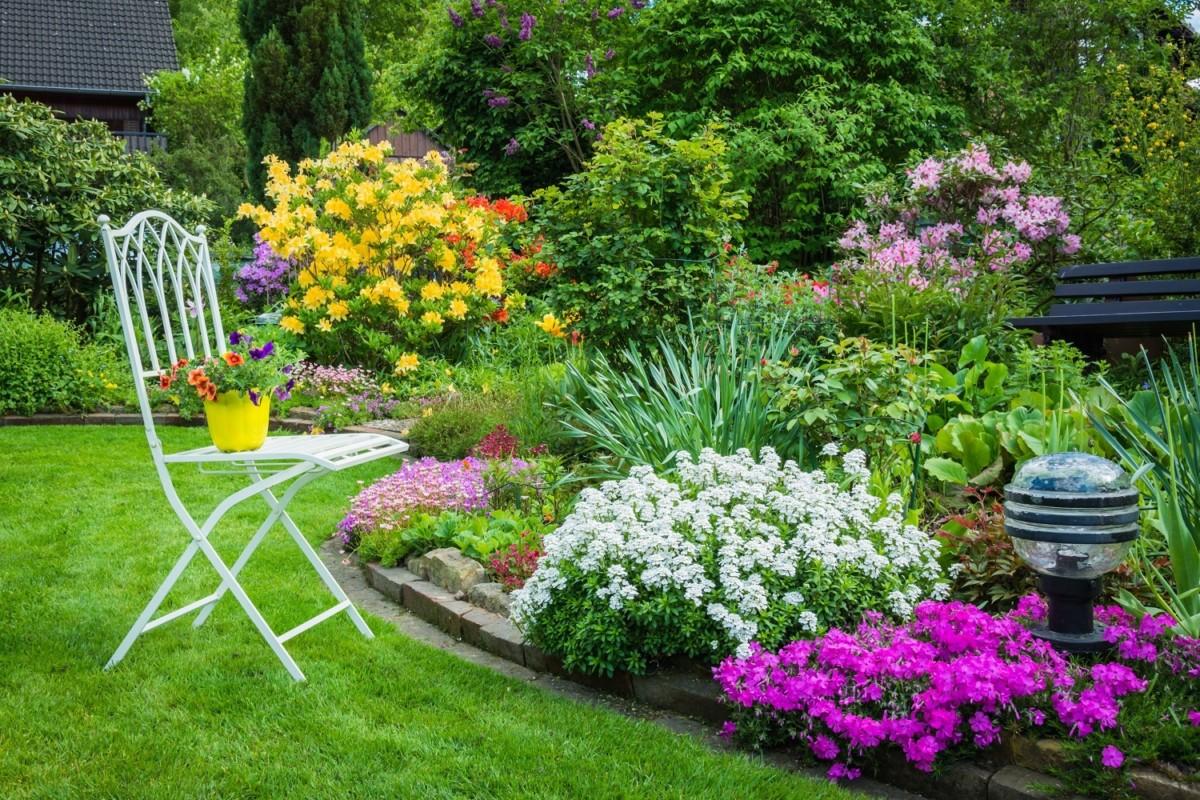 Куда сажать цветы: 5 способов посадить цветы красиво