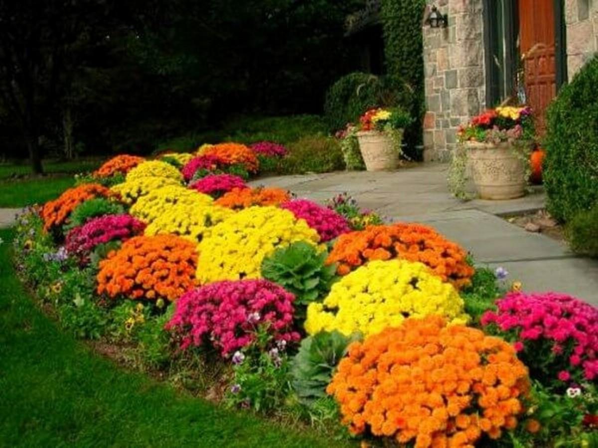 Как украсить сад: 20 идей для оформления дачного участка