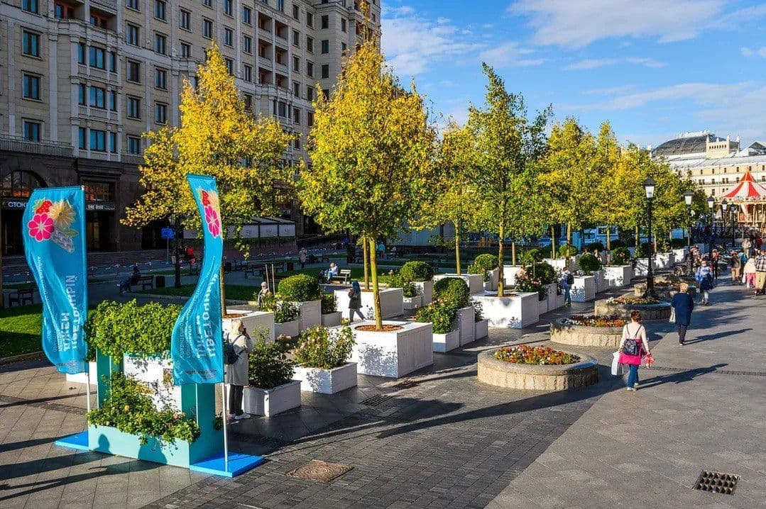 Организационный комитет фестиваля «Цветочный джем» рассказал, куда уберут сады